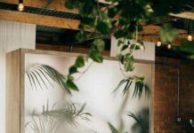 Phòng khách khác biệt với phong cách Tropical (nhiệt đới)